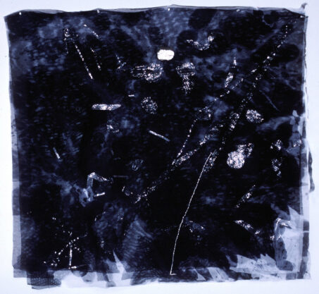Paan I, 1983, mixed media on mosquito net, 25 x 23″